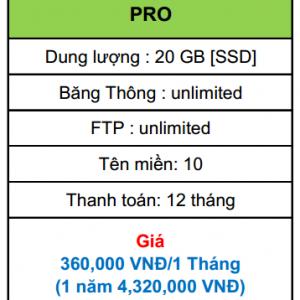 hosting pro
